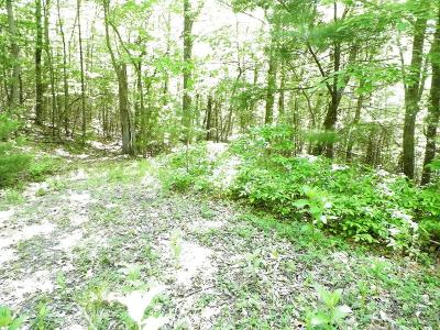 Bland Residential Lots & Land For Sale: 178 Slide Mountain Road