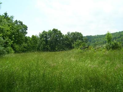 Meadowview Residential Lots & Land For Sale: Tbd Old Saltworks Road