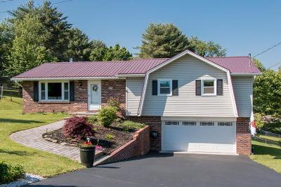Abingdon VA Single Family Home For Sale: $194,900