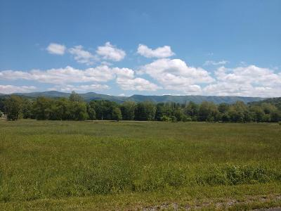 Chilhowie Residential Lots & Land For Sale: Tbd St Johns Way