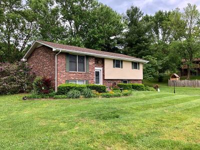 Bristol VA Single Family Home For Sale: $225,000