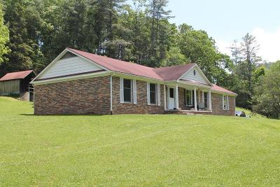 Wytheville Single Family Home For Sale: 222 Mule Hell Rd