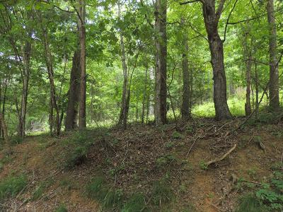 Grayson County Residential Lots & Land For Sale: Tbd Turkey Knob Road