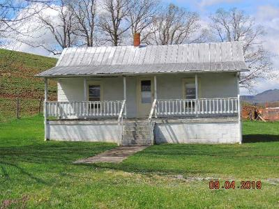 Max Meadows Single Family Home For Sale: 1487 Fort Chiswell Rd.