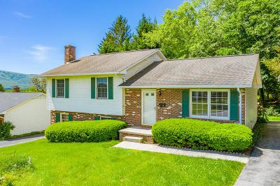 Wythe County Single Family Home For Sale: 995 3rd Street