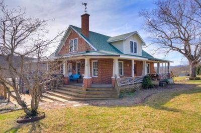 Wythe County Single Family Home For Sale: 2085 Austinville Road