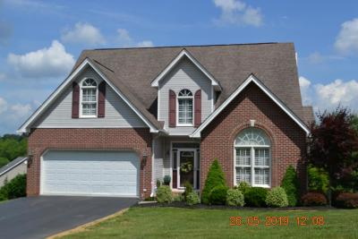 Abingdon Single Family Home For Sale: 19175 Sterling Dr.
