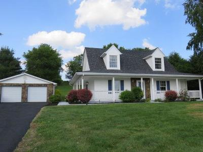 Glade Spring Single Family Home For Sale: 12205 Deerfield Lane