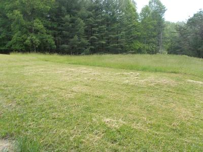 Galax Residential Lots & Land For Sale: 145 Foothills Road