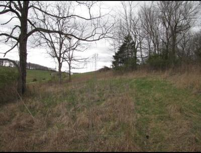 Wytheville Residential Lots & Land For Sale: Tbd Great Oaks Drive