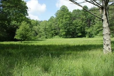 Grayson County Residential Lots & Land For Sale: 11742 Comers Rock Rd