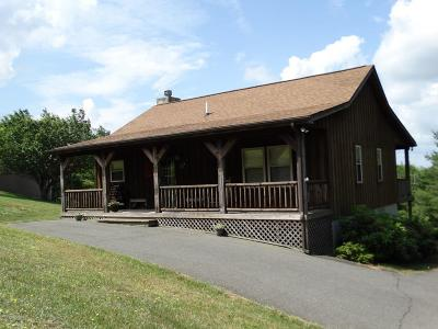 Carroll County Single Family Home For Sale: 421 Apache Trail