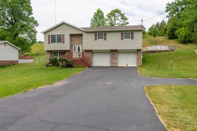 Bristol Single Family Home For Sale: 11395 Wallace Pike