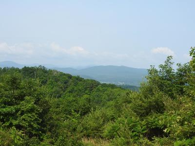 Carroll County, Grayson County Residential Lots & Land For Sale: Tbd Stoots Mountain Rd