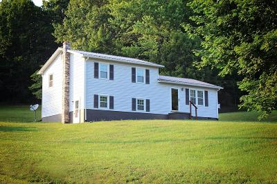 Wythe County Single Family Home For Sale: 349 Ivanhoe Rd