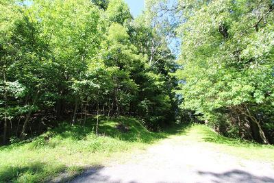 Carroll County, Grayson County Residential Lots & Land For Sale: Lot 6&7 Chestnut Ridge Trail