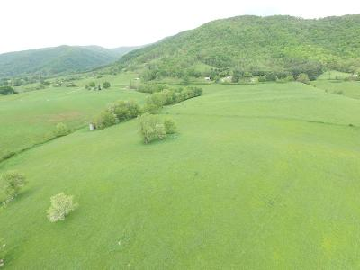 Carroll County, Grayson County Residential Lots & Land For Sale: Tbd Wilson Highway