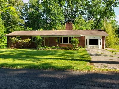 Wythe County Single Family Home For Sale: 1131 Slate Spring Branch Road