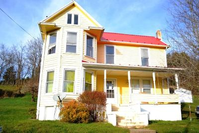 Wythe County Single Family Home For Sale: 544 Painter Hill Rd