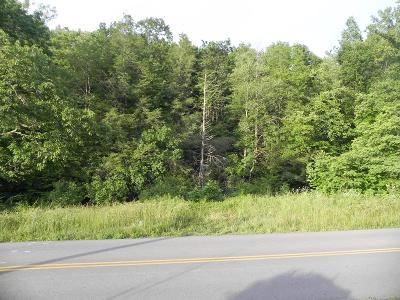 Chilhowie Residential Lots & Land For Sale: 1639 St Clair Creek Rd