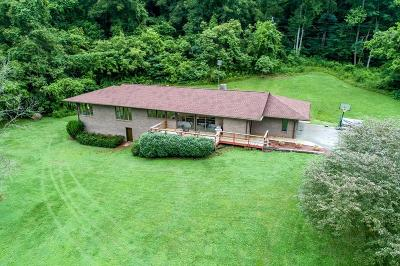 Abingdon Single Family Home For Sale: 22433 North Fork River Road