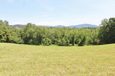 Carroll County, Grayson County Residential Lots & Land For Sale: 801 Old Pipers Gap Road
