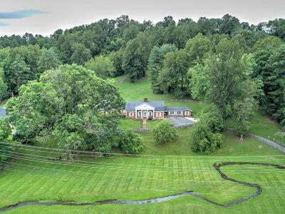 Abingdon Single Family Home For Sale: 16320 Porterfield Highway