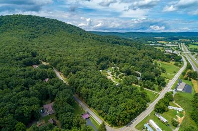 Max Meadows Residential Lots & Land For Sale: 2 Acres Lee Hwy
