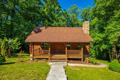 Carroll County Single Family Home For Sale: 71 Meadow View Trail