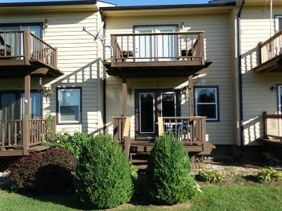 Carroll County Condo/Townhouse For Sale: 672 Evergreen Trl Unit 2