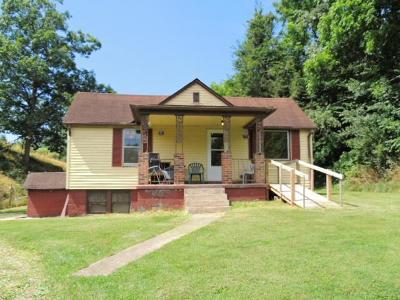 Max Meadows Single Family Home For Sale: 265 Lots Gap Rd.