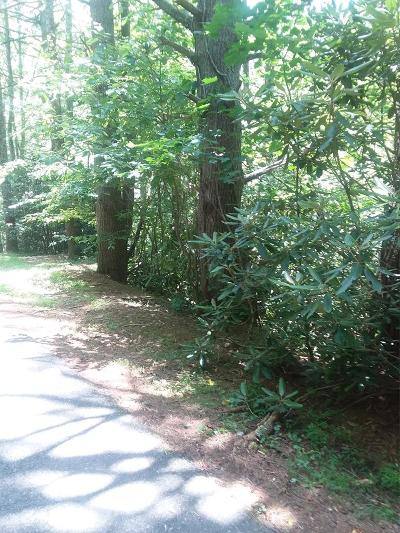 Carroll County, Grayson County Residential Lots & Land For Sale: Tbd Lot 13, 16 Otter Creek Trail