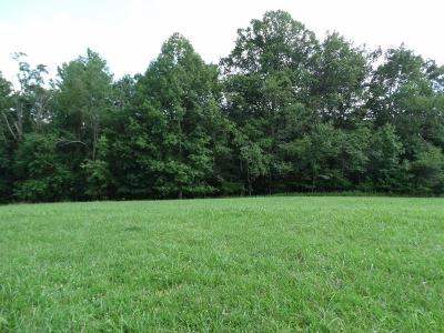Carroll County, Grayson County Residential Lots & Land For Sale: 3773 Stone Mountain Road