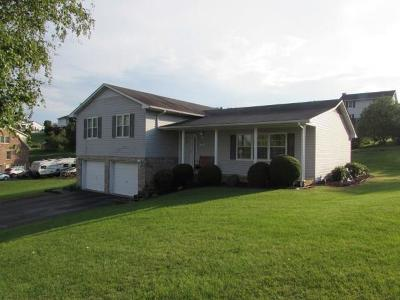 Wytheville Single Family Home For Sale: 315 Arrow Lane