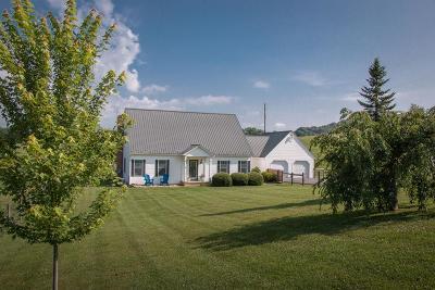 Saltville Single Family Home For Sale: 252 Hill Lane