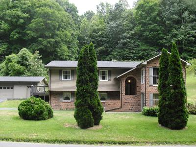 Chilhowie VA Single Family Home For Sale: $220,000