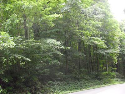 Chilhowie Residential Lots & Land For Sale: 342 Shuler Hollow Rd