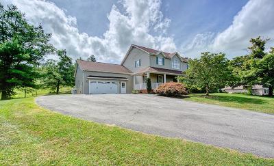 Abingdon VA Single Family Home For Sale: $350,000