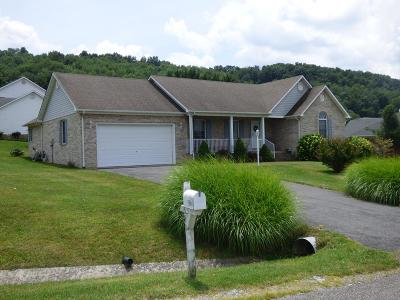 Wytheville Single Family Home For Sale: 590 Century Court