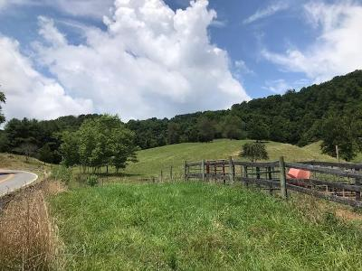Abingdon Residential Lots & Land Active Contingency: Tbd Rich Valley Rd