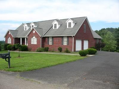 Galax Single Family Home For Sale: 98 Holly Tree Ct
