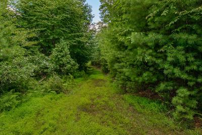 Galax Residential Lots & Land For Sale: Tbd Pipers Woods Dr