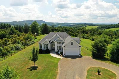 Hillsville Single Family Home For Sale: 403 Big Red Dr