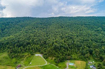 Chilhowie Residential Lots & Land For Sale: 31 Acres Bebee Lane