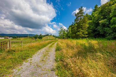 Bland Residential Lots & Land For Sale: Tbd Kimberling Rd.