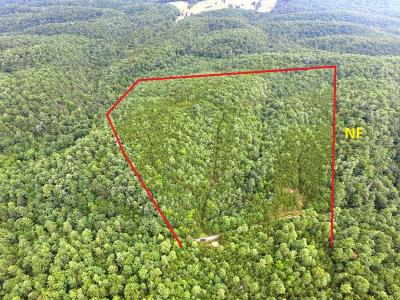 Max Meadows Residential Lots & Land For Sale: Tbd Millers Creek Rd