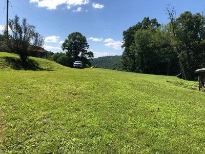 Grayson County Residential Lots & Land For Sale: 642 Low Gap