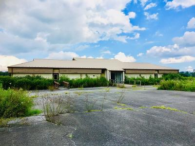 Carroll County, Grayson County Commercial For Sale: 1217 Skyline Hwy