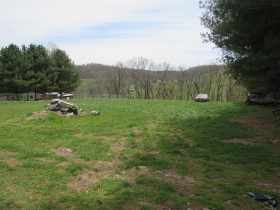 Rural Retreat Residential Lots & Land For Sale: Tbd Ridge Ave
