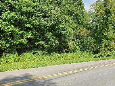 Chilhowie Residential Lots & Land For Sale: Tbd St. Claires Creek Road